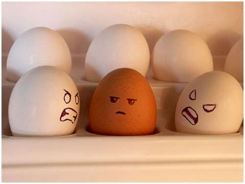 Funny-and-Clever-Egg-Photography-16