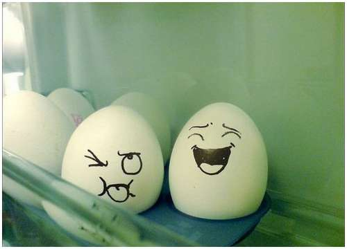 Funny-and-Clever-Egg-Photography-4