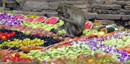 Interesting-Monkey-Festival-in-LopBuri-Thailand