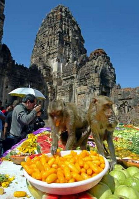 Interesting-Monkey-Festival-in-LopBuri-Thailand-12
