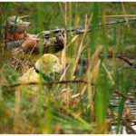 The History of Hunting With Dogs