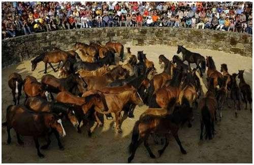 Spanish-festivals-1