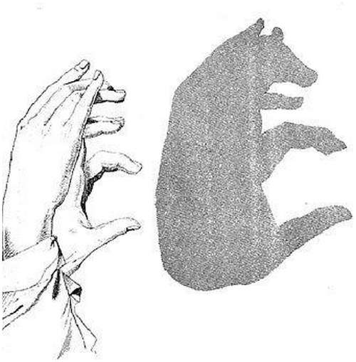 Hand-Shadow-Arts-10