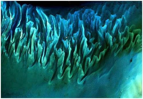 Bahamas-Island-Beach
