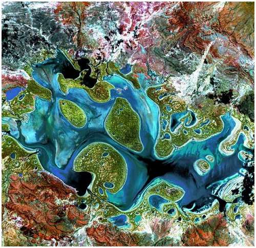 Carnegie-Australia