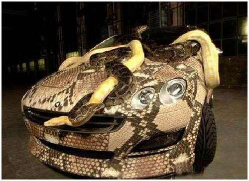 Weird-Snake-Car-3