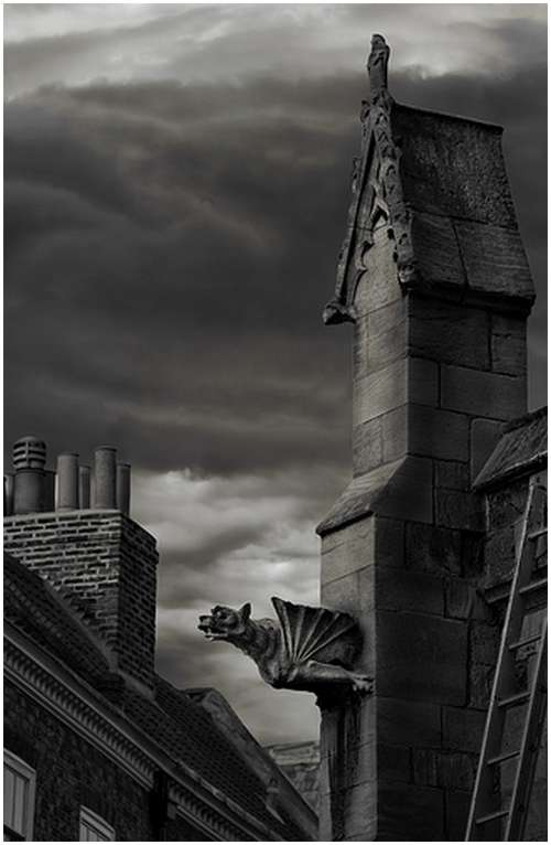 Amazing-Photos-of-Gargoyles-and-Grotesques-1