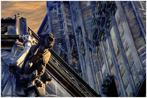 Amazing-Photos-of-Gargoyles-and-Grotesques-3