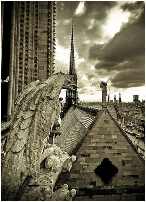 Amazing-Photos-of-Gargoyles-and-Grotesques-6