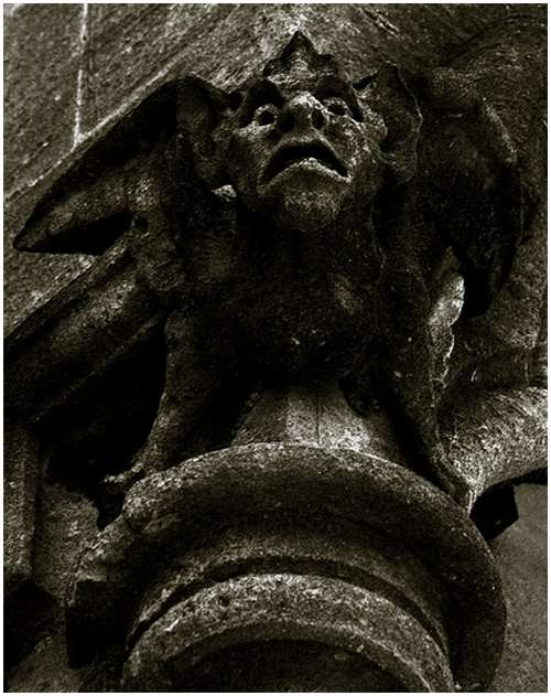 Amazing-Photos-of-Gargoyles-and-Grotesques-8