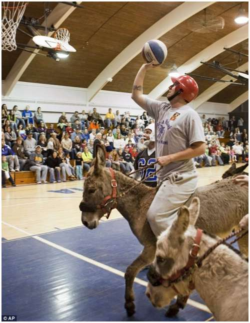 Donkey-Basketball-4