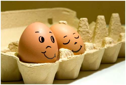 Funny-and-Clever-Egg-Photography-8