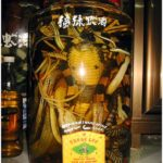 The famous snake wine