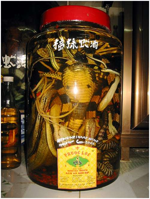 The-famous-snake-wine-1