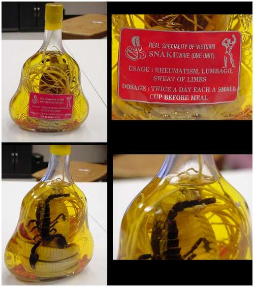 The-famous-snake-wine-12