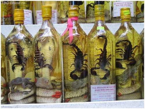 The-famous-snake-wine-2