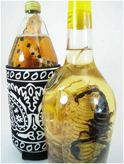 The-famous-snake-wine-5