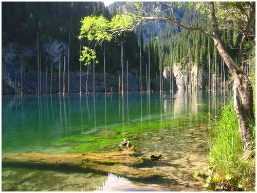 shallow-lake