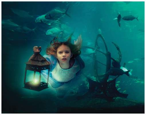 Amazing-Underwater-Photo-Sets-14