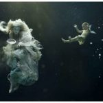Amazing Underwater Photo Sets
