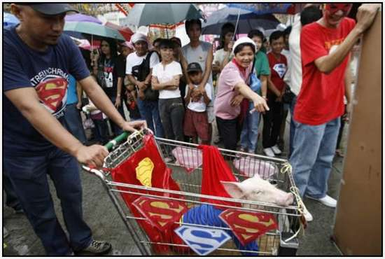 Costumed-parade-of-hogs-in-Bulacan-of-Manila-5