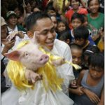 Costumed parade of hogs in Bulacan of Manila