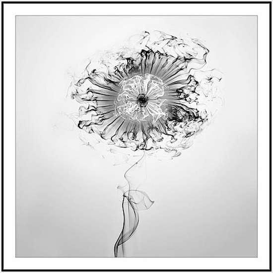 Smoke-Works-by-Mehmet-Ozgur-17