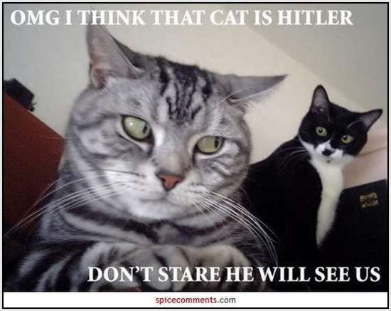 Adolf-Hitler-Funny-Pictures-5