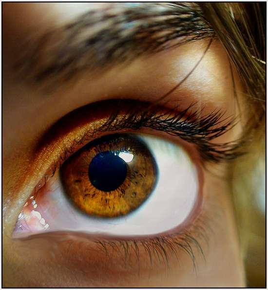 Collection-of-Fantastic-Eye-Photos-5