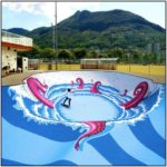 Octopus Skate Pool Art
