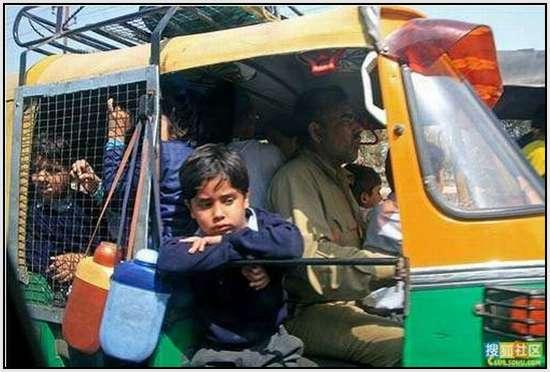 School-Buses-30