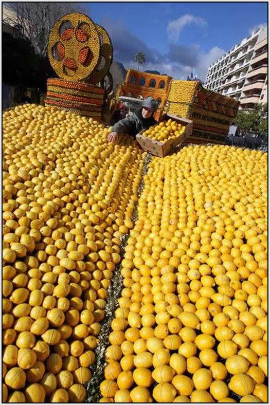 Menton-Lemon-Festival-in-France-9