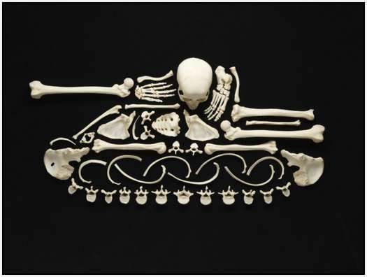 Art-Made-From-Real-Human-Bones-2