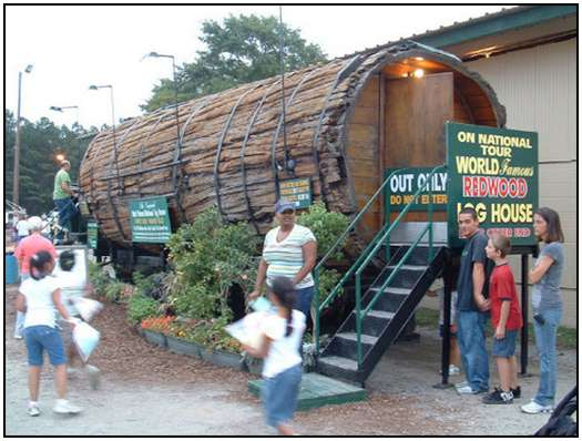 Redwood-Log-House-3