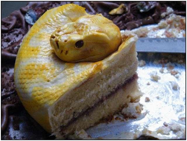 The-Terrifyingly-Realistic-Snake-Cake-3