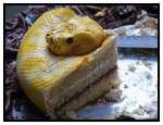 The-Terrifyingly-Realistic-Snake-Cake
